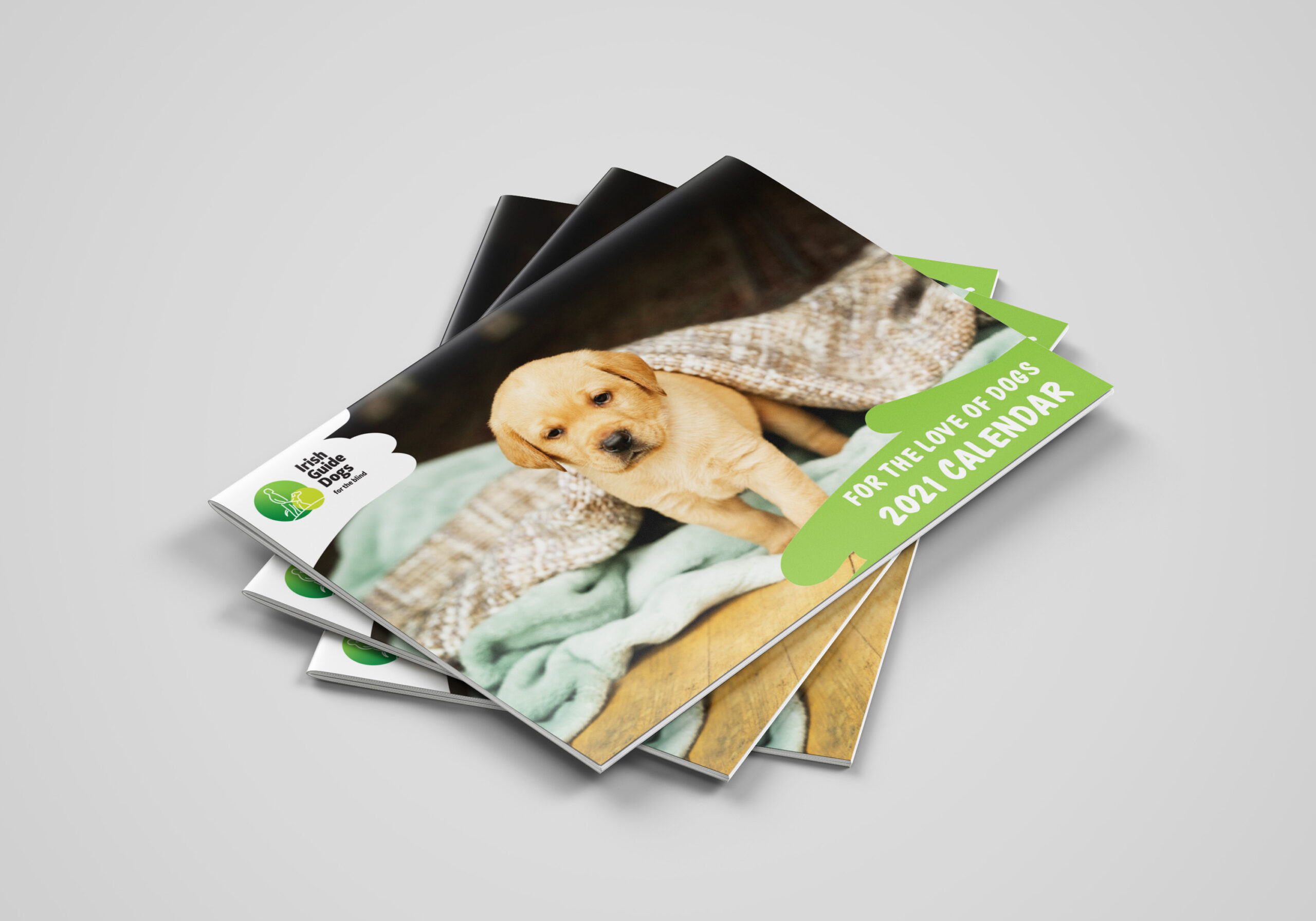 Cover of Irish Guide Dogs Saddle-Stitched A4 Calendar