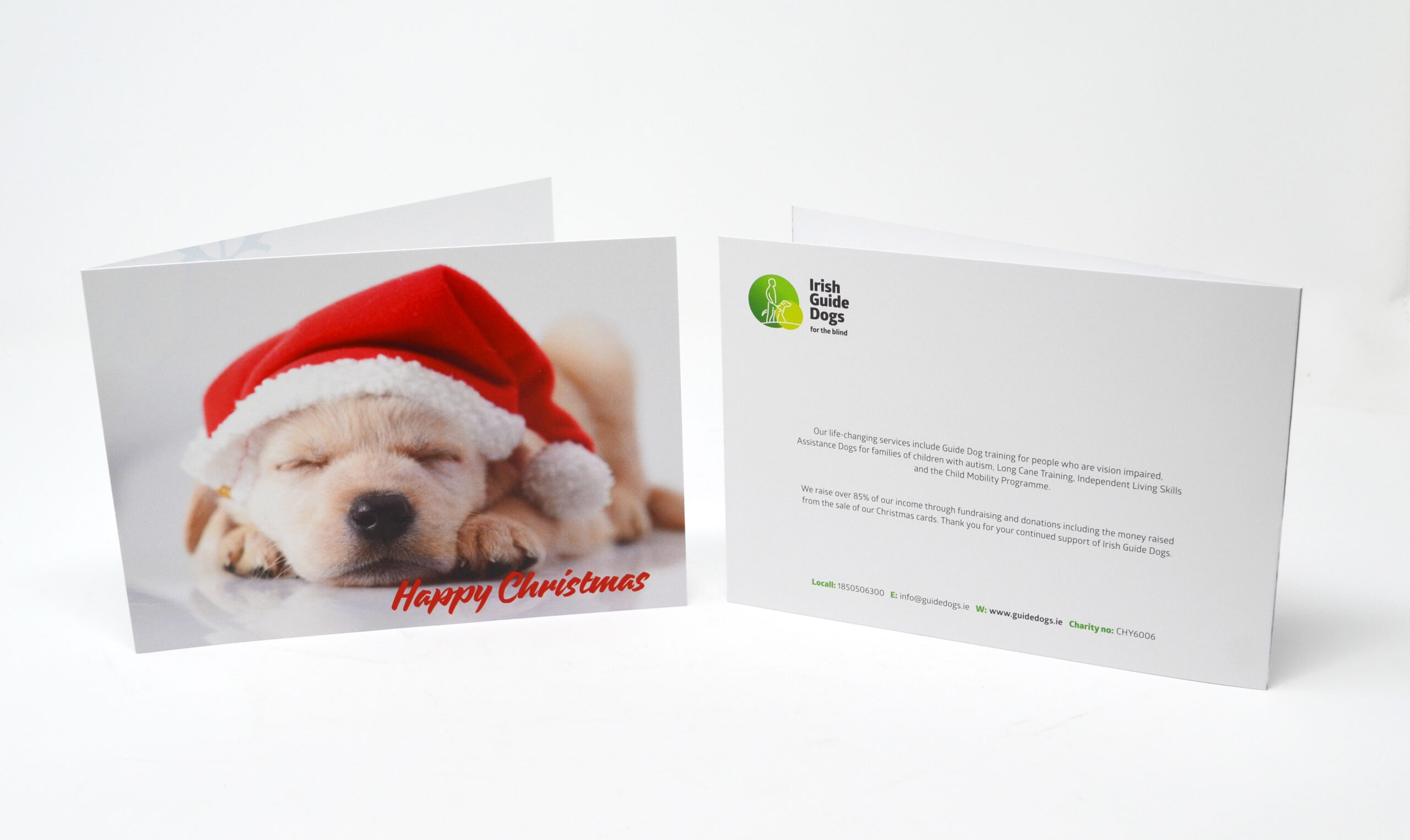 Irish Guide Dogs Christmas Card